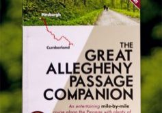 Book cover copy